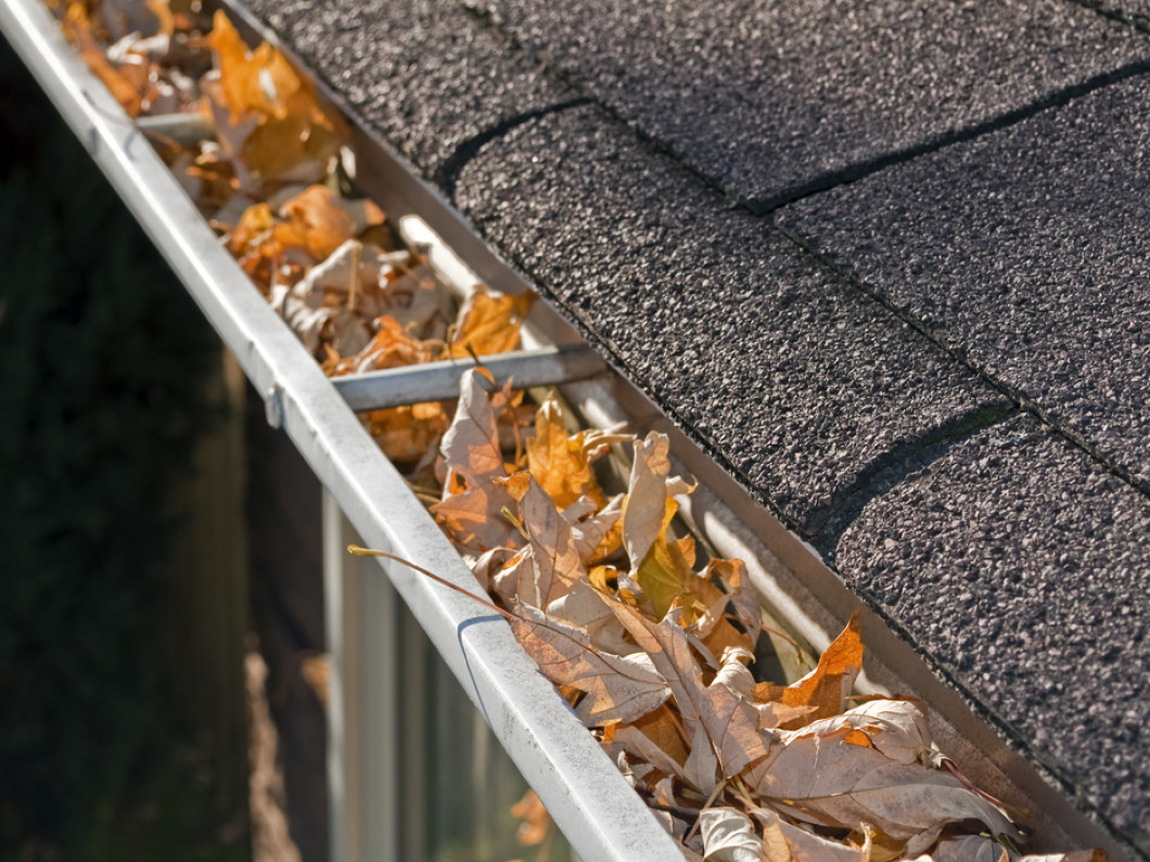 Get a clean roof and smooth-flowing gutters with Nothing But Clean